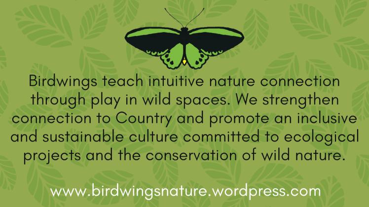 Birdwings Vision Wide