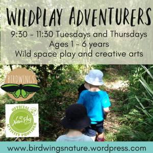 WildPlay Adventurers